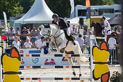Maarse Dave (NED) - Bravo Liefhebber<br /> KWPN Paardendagen - Ermelo 2012<br /> © Dirk Caremans