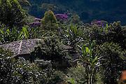 Ouro Preto_MG, Brasil...Casa em uma mata em Ouro Preto, Minas Gerais...A house in a forest in Ouro Preto, Minas Gerais...Foto: BRUNO MAGALHAES /  NITRO