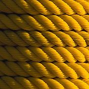 Yellow rope around pole. Baja California Sur, Mexico.