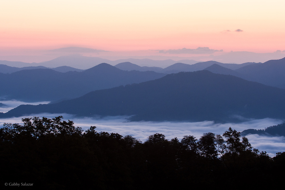 Purchase Knob in Great Smoky Mountain National Park in North Carolina, USA.