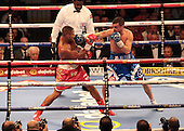 IBF World Welterweight Title  280315