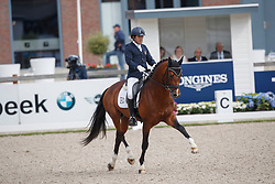Castilla Ruiz Claudio, ESP, San Pikado<br /> Longines FEI/WBFSH World Breeding Dressage Championships for Young Horses - Ermelo 2017<br /> © Hippo Foto - Dirk Caremans<br /> 05/08/2017