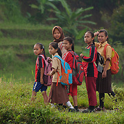 A group of young children. Java, Indonesia.