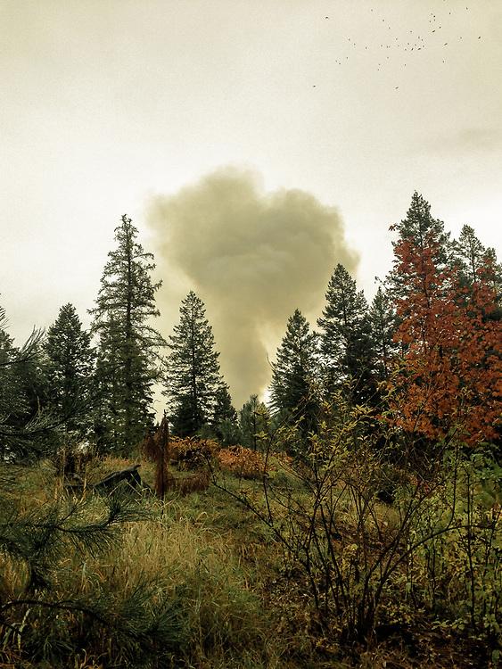 Autumn smoke