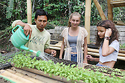 """Final year student class in organic gardening<br /><br />The Green School (Bali) is one of a kind in Indonesia. It is a private, kindergarten to secondary International school located along the Ayung River near Ubud, Bali, Indonesia. The school buildings are of ecologically-sustainable design made primarily of bamboo, also using local grass and mud walls. There are over 600 students coming from over 40 countries with a percentage of scholarships for local Indonesian students.<br /><br />The impressive three-domed """"Heart of School Building"""" is 60 metres long and uses 2500 bamboo poles. The school also utilizes renewable building materials for some of its other needs, and almost everything, even the desks, chairs, some of the clothes and football goal posts are made of bamboo.<br /><br />The educational focus is on ecological sustainability. Subjects taught include English, mathematics and science, including ecology, the environment and sustainability, as well as the creative arts, global perspectives and environmental management. This educational establishment is unlike other international schools in Indonesia. <br /><br />Renewable energy sources, including solar power and hydroelectric vortex, provide over 50% of the energy needs of the school. The school has an organic permaculture system and prepares students to become stewards of the environment. <br /><br />The school was founded by John and Cynthia Hardy in 2008."""