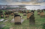 BY THE SEA - WHITBY -  colour photo art by Paul Williams of the graveyard overlooking whitby old town and harbour .<br /> <br /> Visit our REPORTAGE & STREET PEOPLE PHOTO ART PRINT COLLECTIONS for more wall art photos to browse https://funkystock.photoshelter.com/gallery-collection/People-Photo-art-Prints-by-Photographer-Paul-Williams/C0000g1LA1LacMD8