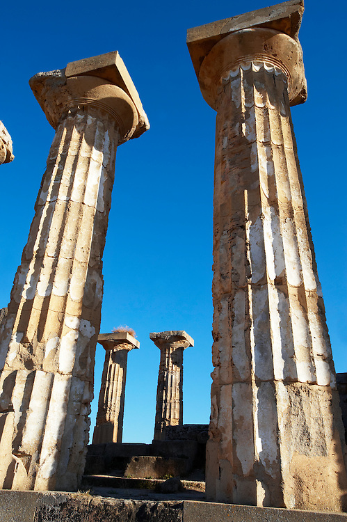 Greek Dorik columns at the  ruins of Temple F at Selinunte, Sicily  photography, pictures, photos, images & fotos. .<br /> <br /> If you prefer to buy from our ALAMY PHOTO LIBRARY  Collection visit : https://www.alamy.com/portfolio/paul-williams-funkystock/selinuntetemple.html<br /> Visit our CLASSICAL WORLD HISTORIC SITES PHOTO COLLECTIONS for more photos to buy as buy as wall art prints https://funkystock.photoshelter.com/gallery-collection/Classical-Era-Historic-Sites-Archaeological-Sites-Pictures-Images/C0000g4bSGiDL9rw