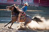 October 1st, 2011. Pico Rivera, California. Traditional charros (Mexican cowboys) compete in a Mexican Rodeo. The competition at the Pico Rivera Sports Arena is a display of horsemanship and lasso skills. Pictured is Noe Reynaga. sliding his horse..PHOTO © JOHN CHAPPLE / www.johnchapple.com