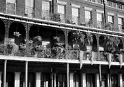 Flowers and other plants cover ornate balconies in New Orleans, LA