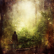 Man climbing broad stairs through a forest - photograph edited with texture overlays