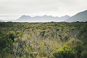 Flats and Ruggedy range, The Southern Circuit, Stewart Island / Rakiura, New Zealand Ⓒ Davis Ulands | davisulands.com
