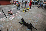 Venice LAPD Shooting 5/6/2015