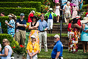 April 29, 2017, 22nd annual Queen's Cup Steeplechase. Jockey Sean McDermott walks to the parade ring before the third race