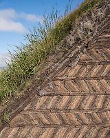 Close-up of the turf at Glaumbær Turf Farm in Skagafjörður, North Iceland.