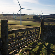 Morning sun over fields of wind turbines.  The Borders of Scotland is dotted with wind farms which are part of the Scottish Government's policy on expanding the renewable energy sector.