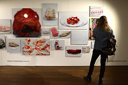 © Licensed to London News Pictures.12/11/2013. London, UK. A visitor admires artwork at the Wellcome Collection's Foreign Bodies, Common Ground exhibition.The exhibition features works exploring health by artists from six countries, made during residencies in medical research centres in Malawi, Vietnam, Kenya, South Africa, the UK and Thailand.Photo credit : Peter Kollanyi/LNP