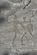 Petroglyph, rock carving, of a two warriors fighting with swords and shields carved by the ancient Camuni people in the iron age between  900-1200 BC. Rock 26-27, Foppi di Nadro, Riserva Naturale Incisioni Rupestri di Ceto, Cimbergo e Paspardo, Capo di Ponti, Valcamonica (Val Camonica), Lombardy plain, Italy .<br /> <br /> Visit our PREHISTORY PHOTO COLLECTIONS for more   photos  to download or buy as prints https://funkystock.photoshelter.com/gallery-collection/Prehistoric-Neolithic-Sites-Art-Artefacts-Pictures-Photos/C0000tfxw63zrUT4<br /> If you prefer to buy from our ALAMY PHOTO LIBRARY  Collection visit : https://www.alamy.com/portfolio/paul-williams-funkystock/valcamonica-rock-art.html