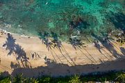 Beach, North Shore, Oahu, Hawaii