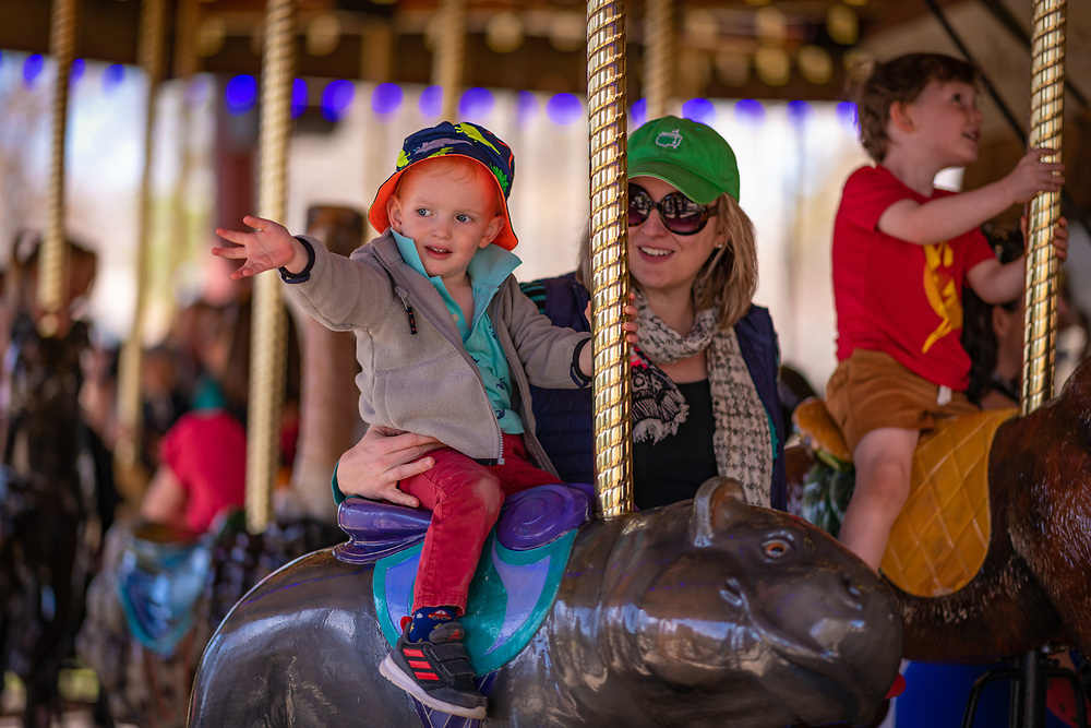 There's nothing like a carousel ride at the zoo!