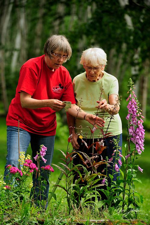 Mrs. Lil Punkari (age 86) discussing gardening issues with daughter Brenda, Greater Sudbury, Ontario, Canada