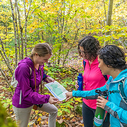 Three women check a map during a hike in the Raymond Community Forest in Raymond, Maine. Fall.