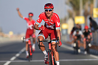 Arrival, KRISTOFF Alexander (NOR) Katusha, winner, during the 15th Tour of Qatar 2016, Stage 4, Al Zubarah Fort - Madinat Al Shamal (189Km), on February 11, 2016 - Photo Tim de Waele / DPPI