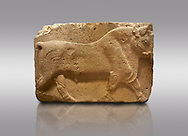 Pictures & images of Phrygian relief sculpted orthostat stone panel, 1200-700 B.C. Anatolian Civilisations Museum, Ankara, Turkey. Figure of a walking bull. <br /> <br /> Against a gray background. .<br /> <br /> If you prefer you can also buy from our ALAMY PHOTO LIBRARY  Collection visit : https://www.alamy.com/portfolio/paul-williams-funkystock/phrygian-antiquities.html  - Type into the LOWER SEARCH WITHIN GALLERY box to refine search by adding background colour, place, museum etc<br /> <br /> Visit our CLASSICAL WORLD PHOTO COLLECTIONS for more photos to download or buy as wall art prints https://funkystock.photoshelter.com/gallery-collection/Classical-Era-Historic-Sites-Archaeological-Sites-Pictures-Images/C0000g4bSGiDL9rw