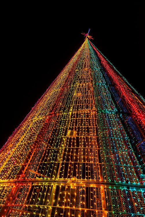 The Mile High Tree, a 110 foot tall digital Christmas tree that you can walk inside to watch a sound and light show.  The tree contains 60,000 strands of LED lights. Denver Performing Arts Complex Sculpture Park, Downtown Denver, Colorado USA.