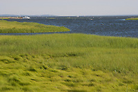 Back River and Great Island from Smiths Neck boat landing, near the mouth of the Connecticut River, Old Lyme, CT