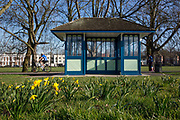 Daffodils begin to bloom on the 25th February 2019 in Brockwell Park, Herne Hill in the United Kingdom. A new English record was set on this day with temperatures rising to 20.1C in south-west London. It is the first time a temperature of over 20C has been recorded in England during winter.