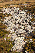 'Stone run' - due to frost heave action large rocks flter their way to surface, smaller ones below, Falkland Islands