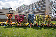Floral display outside St Thomas Hospital I heart NHS  on 6th April 2020 in London, United Kingdom. Last night Prime Minister Boris Johnson was admitted to St Thomas Hospital for undergoing tests after suffering persistent symptoms of coronavirus for 10 days.  There have been almost 50,000 reported cases of the COVID-19 coronavirus in the United Kingdom and almost 5,000 deaths. The country is in its third week of lockdown measures aimed at slowing the spread of the virus.