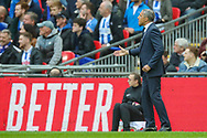 Brighton & Hove Albion manager Chris Hughton instructs his team during the The FA Cup semi-final match between Manchester City and Brighton and Hove Albion at Wembley Stadium, London, England on 6 April 2019.