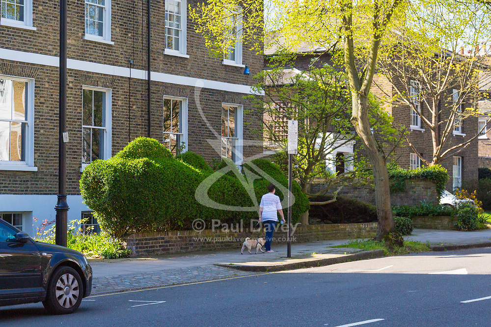 Two topiary fish form the hedge of a house on Canonbury Park North,London, April 20 2018.