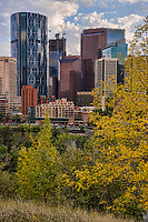 Downtown Calgary from Rotary Park