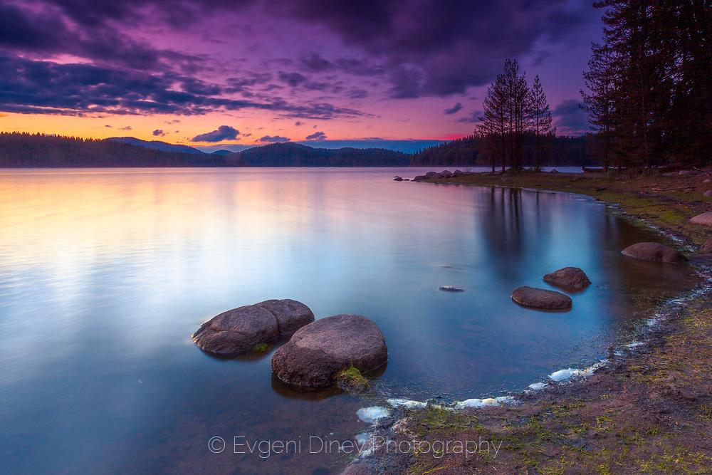 Dry log by a calm lake at sunrise