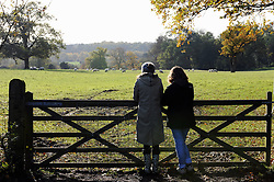 © Licensed to London News Pictures. 13/11/2013<br /> A sunny but cold Autumn afternoon today (13.11.2013)<br /> at (National Trust) Hawkwood Estate,Botany Bay Lane,Chislehurst,Kent.<br /> Photo credit :LNP