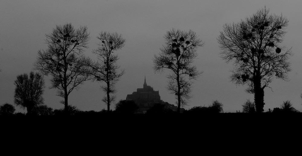 Mont-Saint-Michel through trees