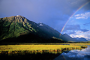 Rainbow over marsh near Seward, Alaska.