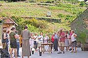 Tasting wine. Domaine Marc Kreydenweiss, Andlau, Alsace, France