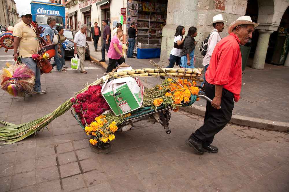 North America, Mexico, Oaxaca Province, Oaxaca, man wheeling flowers and sugar cane through street during Day of the Dead (Dias de los Muertos) celebration