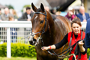Gendarme ridden by Rossa Ryan and trained by Aleandra Dunn in the Empire Fighting Chance Handicap race. , - Ryan Hiscott/JMP - 06/05/2019 - PR - Bath Racecourse- Bath, England - Kids Takeover Day - Monday 6th April 2019