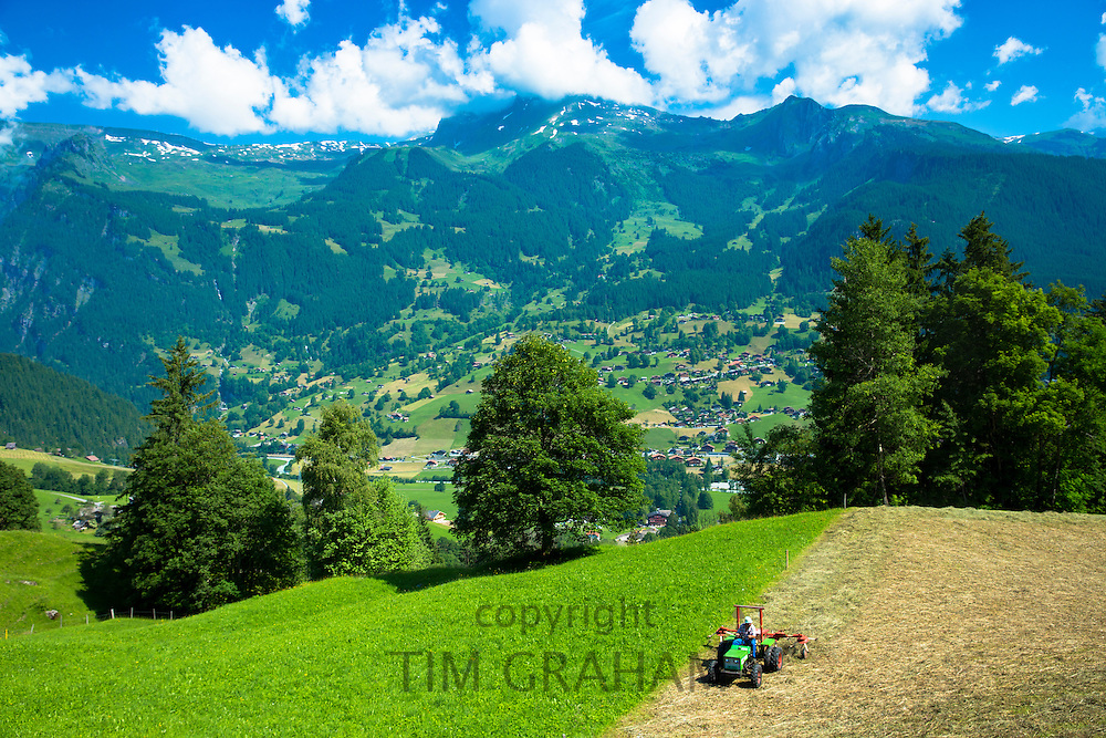 Farmer turning cut hay to dry it at  Grindelwald beneath the Eiger mountain in the Swiss Alps in the Bernese Oberland, Switzerland