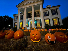 10/16/21 Pumpkin Spooktacular @ The Waldomore