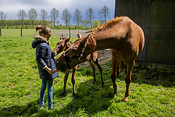Vins CD, O SO Lucky CD<br /> Wachtebeke 2021<br /> © Hippo Foto - Dirk Caremans<br /> 16/05/2021