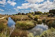 Dominguez Gap Wetlands, Long Beach, California, USA