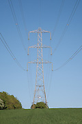 Electricity Pylon, suspension tower design set against a blue sky above a wheat field in early growth stage near Leckhampton Hill in Gloucestershire, England