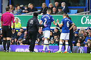 Morgan Schneiderlin of Everton is taken off injured. Premier league match, Everton v Hull city at Goodison Park in Liverpool, Merseyside on Saturday 18th March 2017.<br /> pic by Chris Stading, Andrew Orchard sports photography.