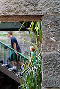 People on stairway, viewed through doorway in old sandstone wall. The Rocks, Sydney, Australia