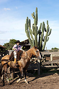 Young boy Gaucho cowboy Brazilian riding a horse with a cactus in the background. Working Gaucho Fazenda in Rio Grande do Sul, Brazil.